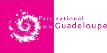Parc National de Guadeloupe Guadeloupe plongée évasion